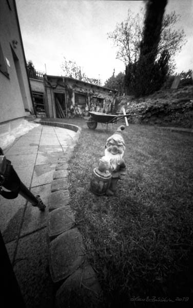 Pinholeday 2019 - spring job