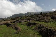 El Hierro - north - inlands -