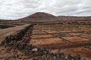 Lanzarote - an old saline at Los Cocoteros
