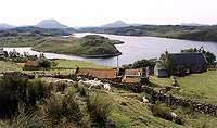 u Kinlochbervie, Northwest Highlands