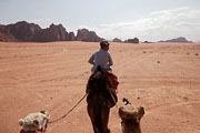 Wadi Rum - in the saddle again
